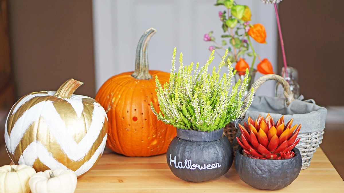 halloween k rbisse dekorieren eileena ley. Black Bedroom Furniture Sets. Home Design Ideas